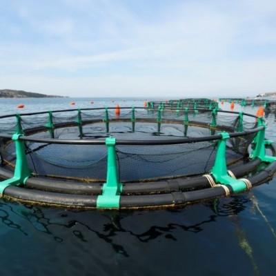 Fonda Fishfarm