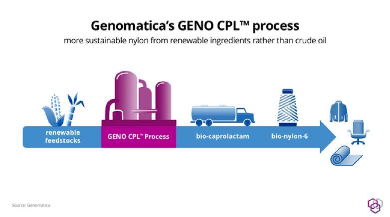 genomatica schema grafico