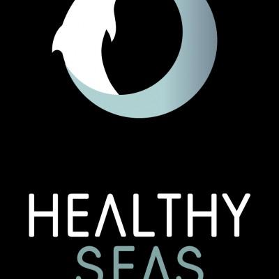 """""""The Healthy Seas"""" contro le reti da pesca abbandonate"""
